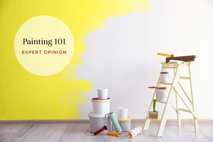 Expert Opinion All You Need To Know About Painting Your House