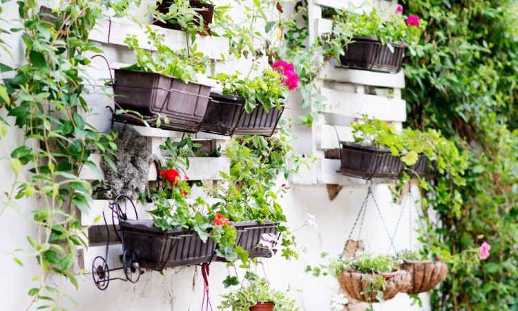 5 Creative DIY Ideas To Grow A Vertical Garden
