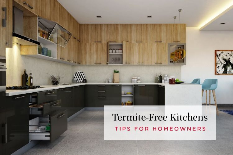8 Tips To Ensure Your Kitchen Is Termite Free